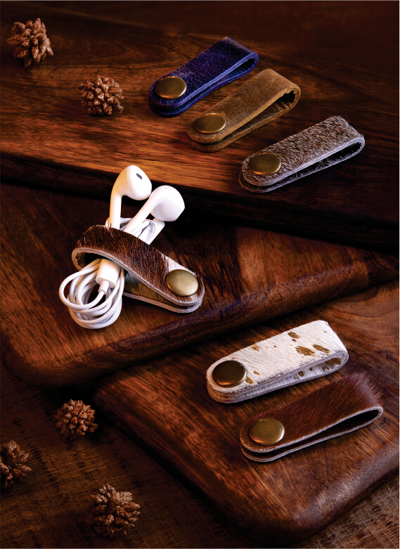 Ear Phone Organizer